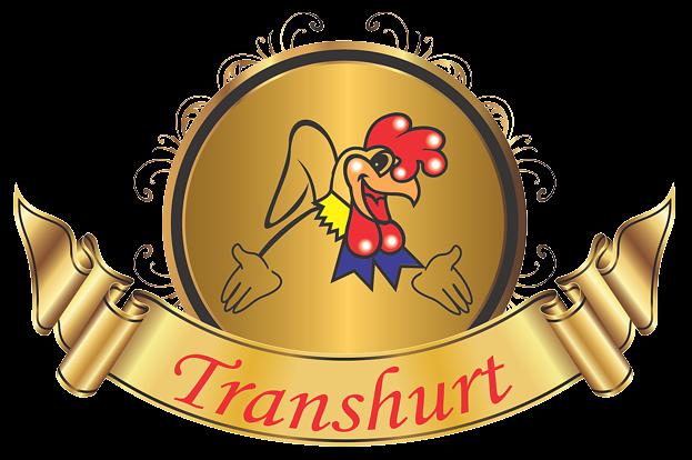 http://transhurt.com/wp-content/uploads/2017/02/logo-transhurt.png
